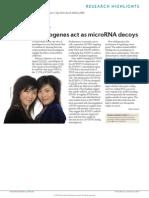 Pseudo Genes Act as MircoRNA Decoys