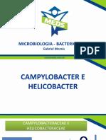 Campylobacter e Helicobacter - Slides