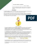 Guía de Cinética Quimica