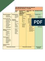 311073657-Niveles-de-Prevencion-de-Diabetes.docx