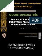 Terapia Pulpar en La Denticion 2