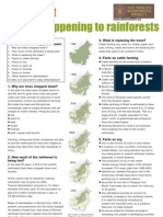 Rainforest Factsheet Teachers