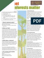 Rainforest Factsheet Teachers - Why Rainforests Matter