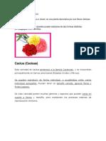 plantas asexuales.docx