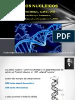 Ácidos nucleicos 2017