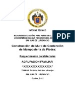 Informe Técnico - Modelo (Solis)