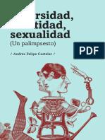 Rodriguez Diversidad Identidad 2015