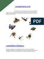 Insectos y Su Importancia en La Agricultura