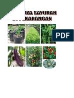 Budidaya sayuran di pekarangan,brosur buku - Copy - Copy (2).docx