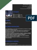 14-curriculum-vitae-insolito-azul-97-2003 tarea tic.docx