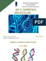 U5.2. El ADN