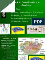 Tema 2 Biología y Genética