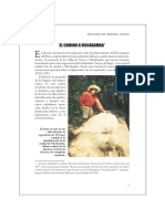 caminovilca.pdf