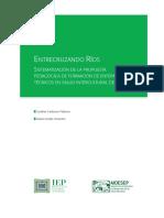 Cardenas-Pesantes_Entrecruzando-rios.pdf