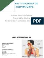 Anatomiayfisiologiadeviasrespiratorias 150311215232 Conversion Gate01