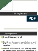 Aula 8 - Bioengenharia