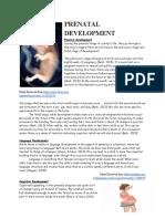 prenatal development final  1