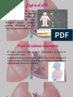 Regulación Del PH Por Medio de Pulmones