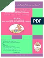 74133108-MONOGRAFIA-DE-APEGO.docx