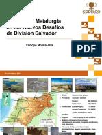 4_Rol de la metalurgia div salvador - E.Molina.pdf