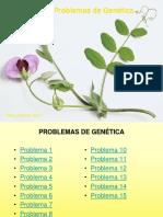 15 problemas genetica (1).pptx