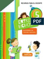 Entre Bichos 5 doc.pdf