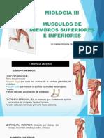 MIOLOGIA 3 BRAZO Y PIERNA.pptx