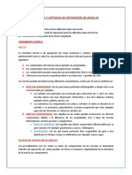 TECNICAS DE SEPARACION.docx
