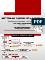 Sistema de Conducción Cardiología
