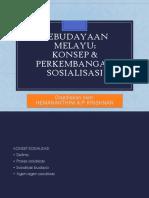 Kebudayaan Melayu Konsep Dan Perkembangan Sosialisasi