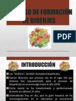 formacion de biofilms