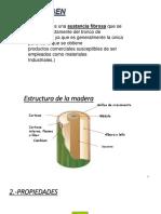 caracteristicas fisco quimicas de la madera.pptx