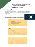 ANALIZAR EL COMPORTAMIENTO DE LA FAMILIA TIPO DE SU PODER ADQUISITIVO EN UN PERDIODO.docx