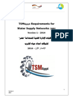 TSM-Egypt Water Network Requirements 2014