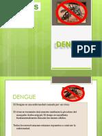 Dengue Chikungunya