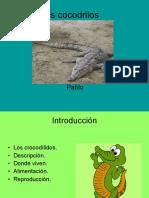 loscocodrilos-100115144727-phpapp01