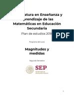 PROGRAMA MAGNITUDES Y MEDIDAS.pdf