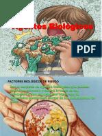 Agentes Biologicos1