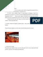 Capitolul 2 - Containerul Frigorific Translate