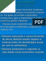 C17-AP.-DIG-II.ppt