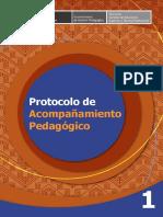 Protocolo de Acompañamiento Pedagógico