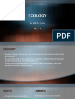 Ecology and Civil Engineering
