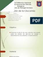Regulación de Glucemia