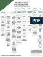 1. Mapa Conceptual, Principios Fundamentales de Las BPL