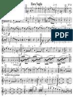 14 - Hava Nagila Saxo Tenor & Clarinette Basse Sib 1 & 2