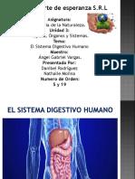 El Sistema Digestivo Humano