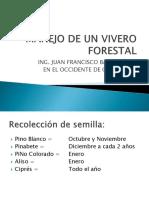 Manual-de-Viveros-Forestales-en-El-Occidente-de-Guatemala.pdf