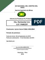 Informe avance FORMATO.docx