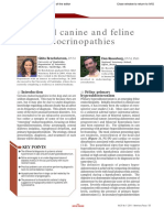7. Canine and Feline Eosinophilic Skin Diseases