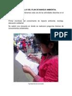 Desarrollo Del Pma-y (2)
